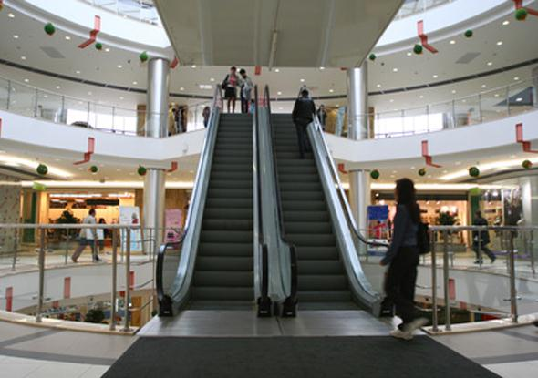 Escalator and Conveyor Belt